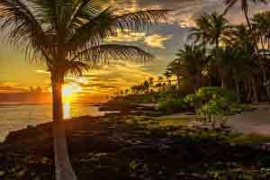 Ylang ylang Polinesia sunset perfume